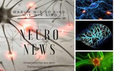 Neuro News: Führung & Motivation