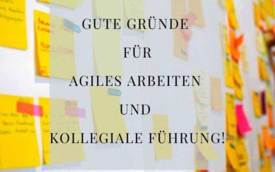 Teil 2. 3 Gute Gründe, warum agiles arbeiten und kollegiale Führung Sinn machen!